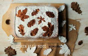 torta-alle-noci-e-cioccolato1